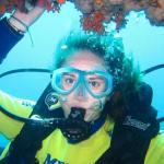 Unterwasserwelt Mallorca